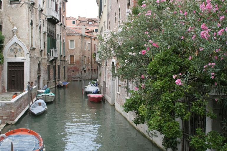 Skip the Line: Venice Walking Tour with St Mark's Basilica - Venice