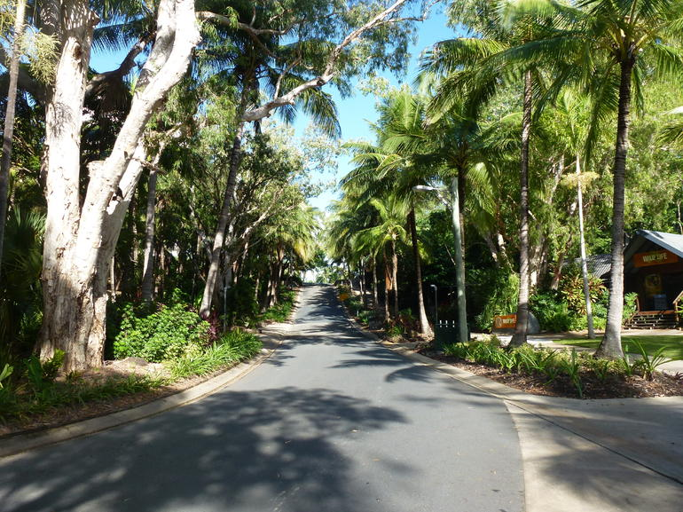 Typical street - Airlie Beach