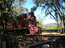 at Grgich Hills Winery - the winery that put Napa on the Map , Shelley H - October 2014