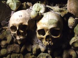 Catacombs, Paris, Katricia R - October 2010