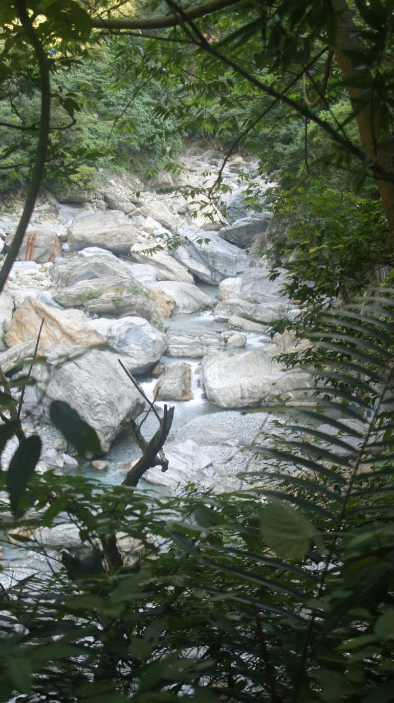 Nature #1 - Taiwan