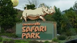 Welcome to the Safari Park!, Cat - May 2015