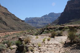 This is a shot from the Canyon floor. , Melanie S - October 2013