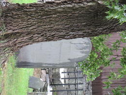 Salem cemetary and memorial , Justina S - October 2012