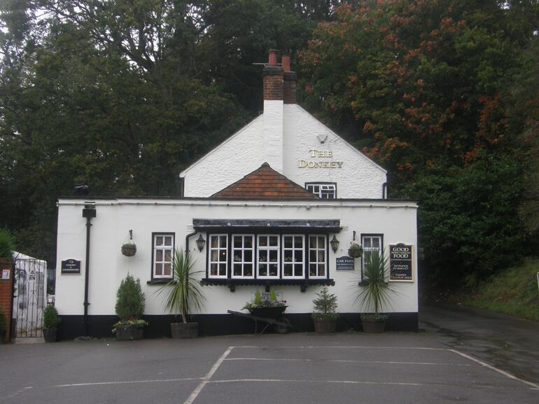 The Donkey, near Elstead -