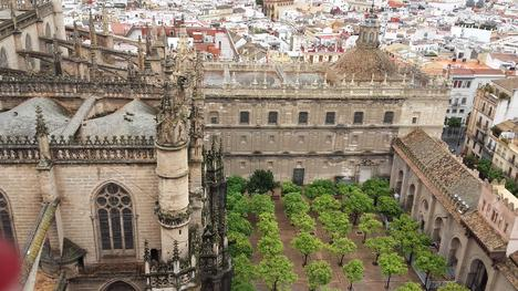 Monumental Seville: Cathedral and Alcazar Guided Tour (with Photos) - Seville