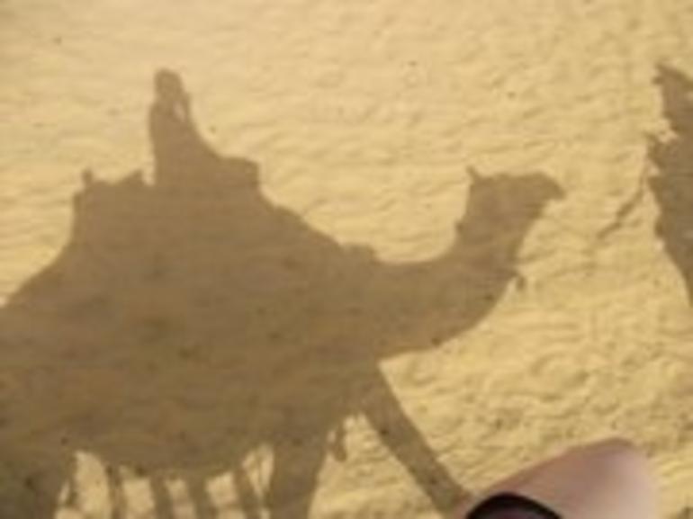Giza camel ride - Cairo