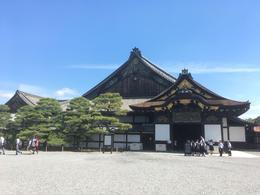 Nijo castle , kbn818 - June 2017