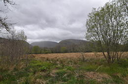 The highland scenery , kirwin12 - May 2012