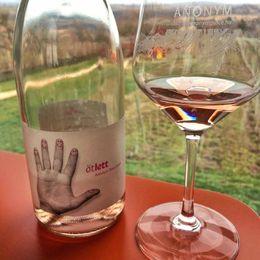 Enjoy wine with the view of vineyard : , JIHYE K - April 2016