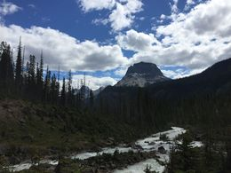 2nd Highest in Canada , jak - August 2016