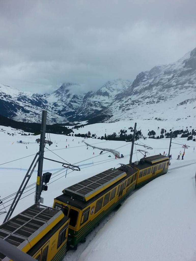 Eiger - Jungfrau Glacier Panorama View (from Zurich) photo 13