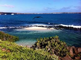 Beautiful view of Crater Bay, Genovesa Island, Galapagos - August 2011