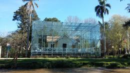 Envolvida em vidro para preservação , Artur Ribeiro - September 2014