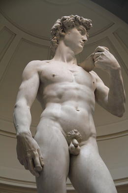 The guide had a good explanation on why Michelangelo made David's hand and head larger than well proportioned. , Amit S - June 2014