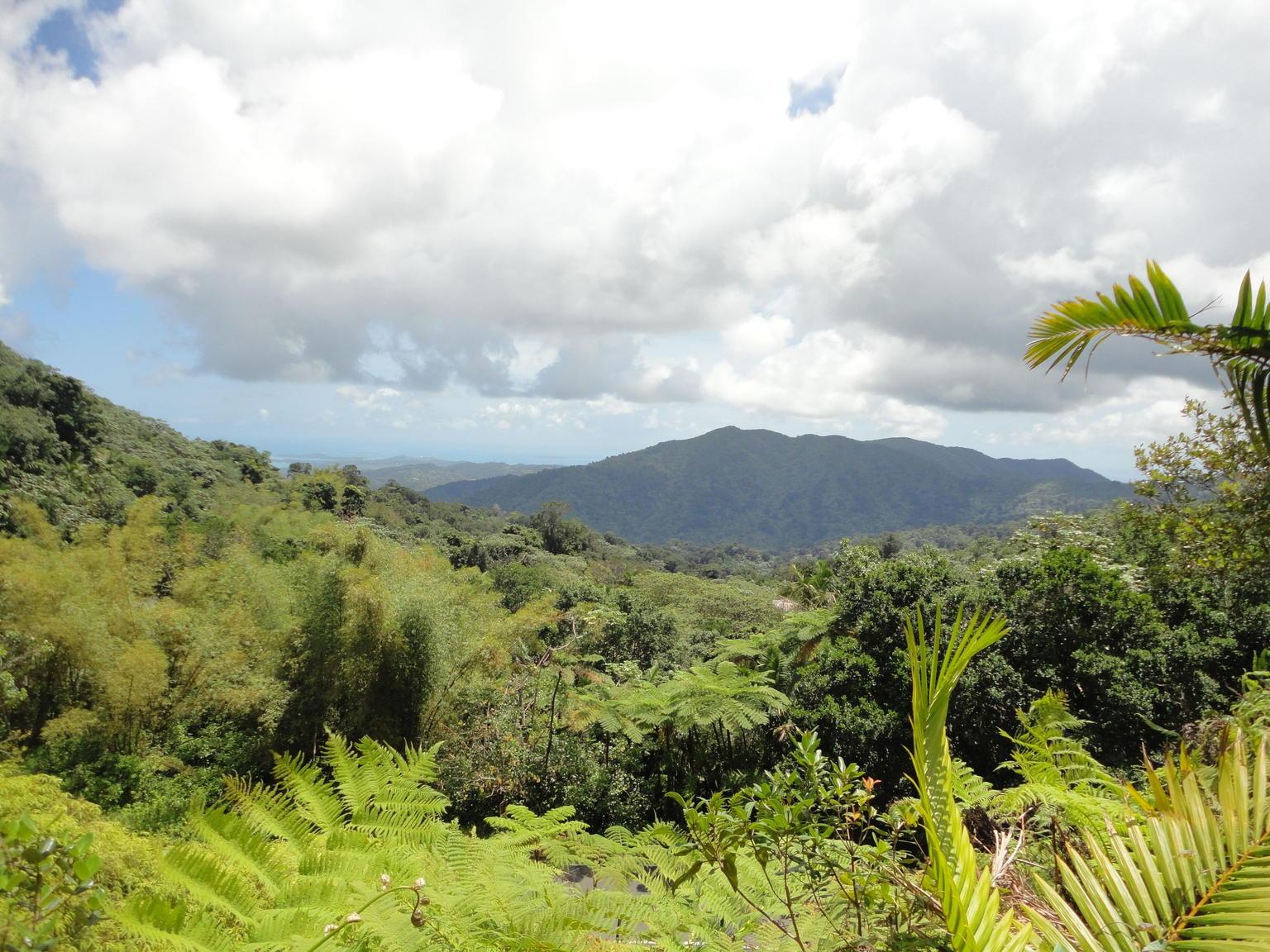 - San Juan, PUERTO RICO