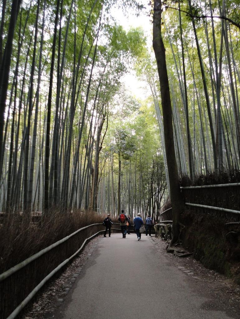 Sagano - Kyoto
