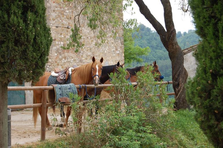 Tuscany by Horse - Florence