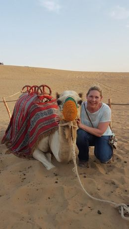My Camel, Camille :- , JoLyn B - September 2015