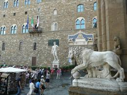 Statue of David and Lion in Piazza della Signoria, Philippa Burne - July 2011