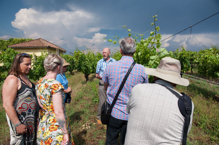 Frascati Wine Tasting Guided Tour from Rome photo 17