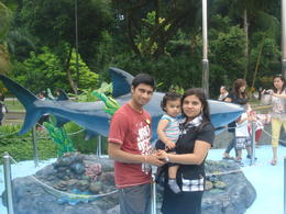After finishing the Dolohin show, my whole family took snap with the Shark. , BHAVIN S - September 2012