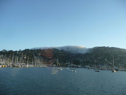 Watched the fog rolling over the hill into Sausalito boat harbor was like watching an avalanche... fascinating! , Cherrie H - April 2015