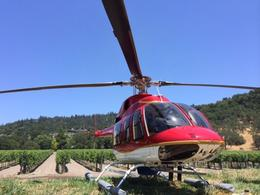 Landing in the vineyards, taylor - June 2014