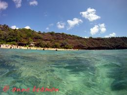 Anne Beamon: Hanauma Bay............Hi, anne beamon - May 2010