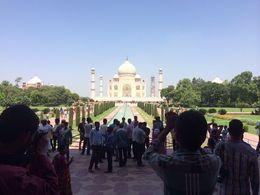 Taj Mahal tour!, Frank W - September 2015