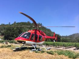 We landed right in the vineyard of the winery, taylor - June 2014