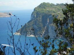 Overlooking from Capri , Janet S - September 2016