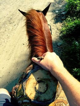 Holding Tight on Horseback Near Ixtapa/Zihuatanejo, Mexico, mikerichard - August 2015