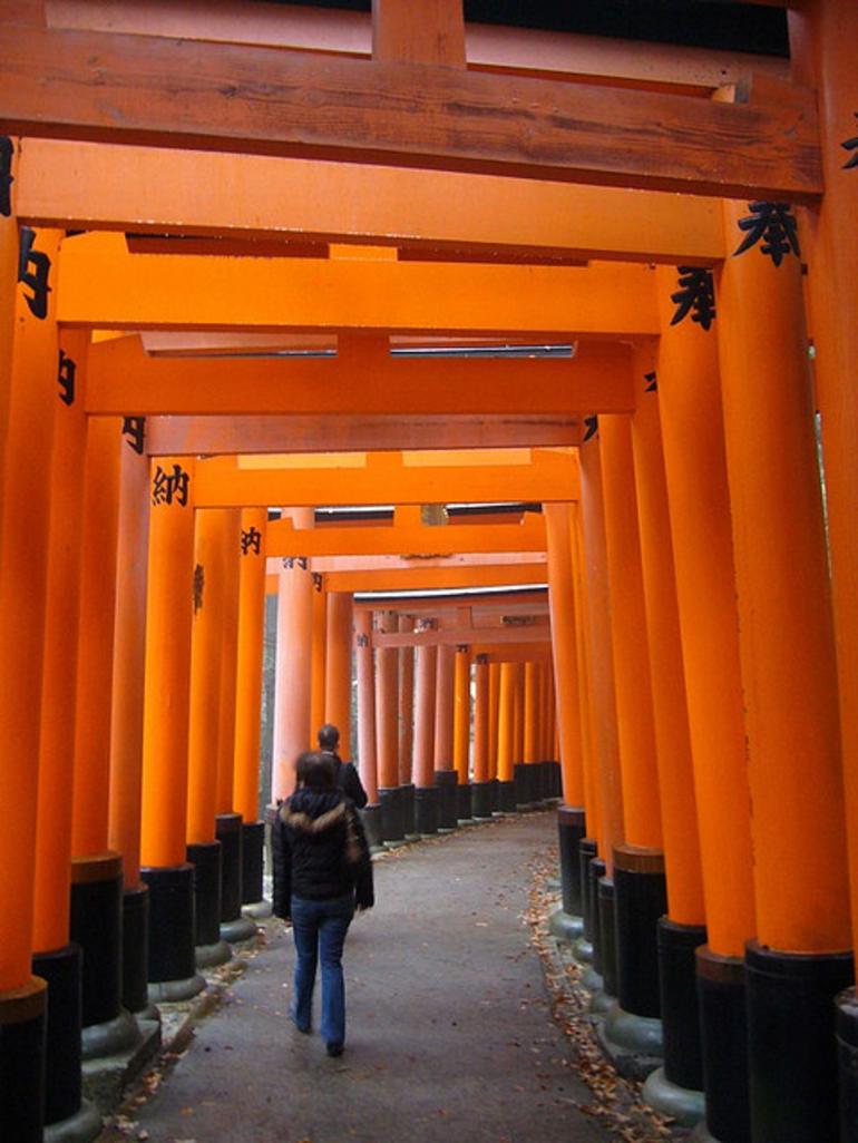 More Torii - Kyoto