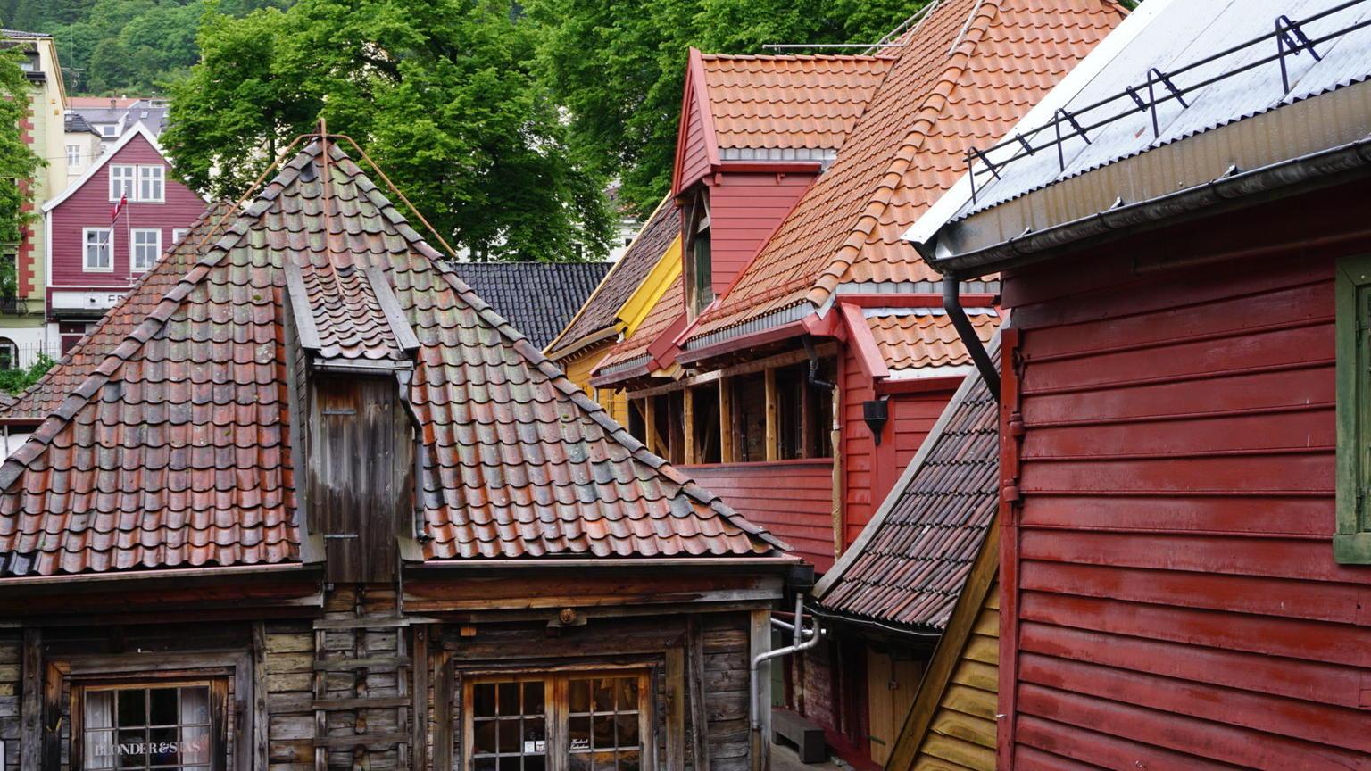 MÁS FOTOS, Tour turístico por la ciudad de Bergen en autobús con paradas libres