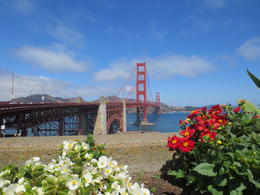 San Francisco Bridge , Deborah F - September 2014