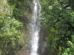 This was one of the many waterfalls we saw along the road to Hana. , Geraldine L - November 2013