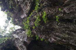 foto scattata dalla seconda scalinata verso l'apertura della grotta , lorenzo b - June 2016