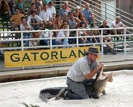 One of the guides demonstrating the alligator wrestling take-down move., JennyC - February 2008