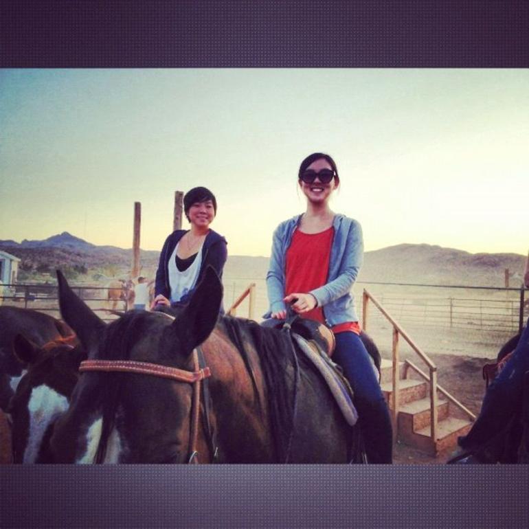 horses! - Las Vegas
