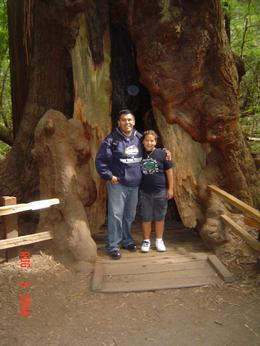 We had a great time in Muir Woods. It was a nice clear day to walk in the woods., EDUARDO S - August 2009