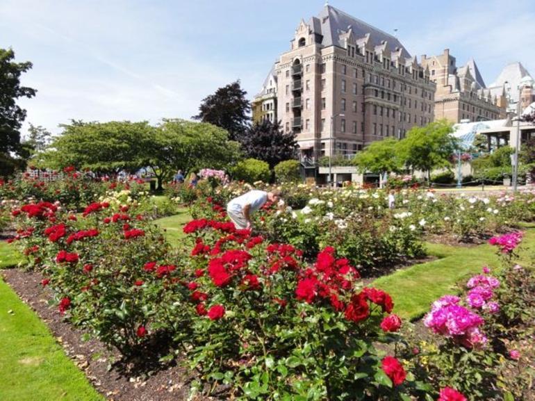 Victoria - Empress Rose Garden - Victoria