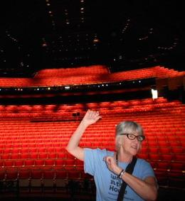 Have been on stage of the Opera House - no need to become an artist now. , Anna J - February 2013