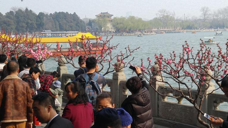 Private Tour: Temple of Heaven, Tiananmen Square, Summer Palace and Forbidden City photo 14