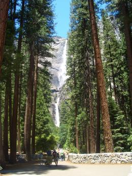 A waterfall in Yosemite National Park, Laura S - July 2009