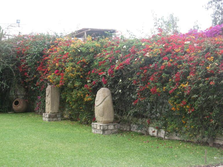 Garden - Lima