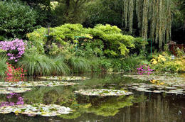 Claude Monet's lily pond, Giverny, France - May 2011