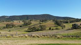 Hunter Valley Wine Tour , Lucy - August 2015