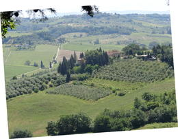 This is a sample of the scenery you will come across from the Chianti region , AggieJAC - June 2013
