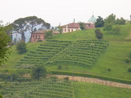 Prosecco wine country in the Veneto region of Italy - November 2011
